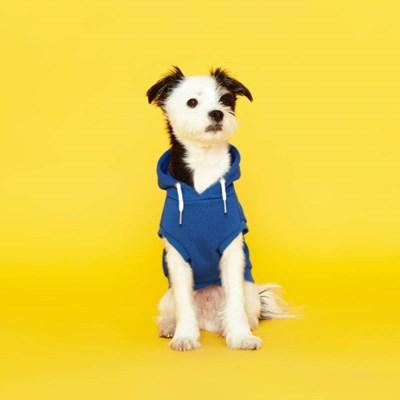플로트 스탠다드 민소매후드 강아지옷 블루_(898203)