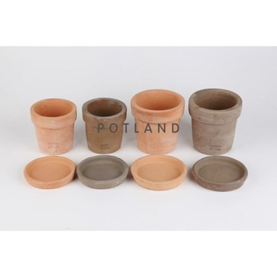 포트랜드 테라코타 소품 토분 2colors