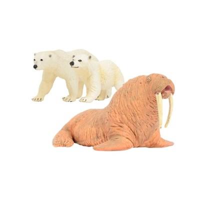 [사파리엘티디] 북극곰&바다코끼리 동물피규어 세트(273_(1728010)