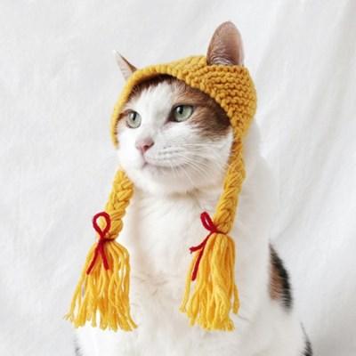 노랑 니트 가발 고양이 강아지 옷 모자 할로윈 코스튬 MIYOPET