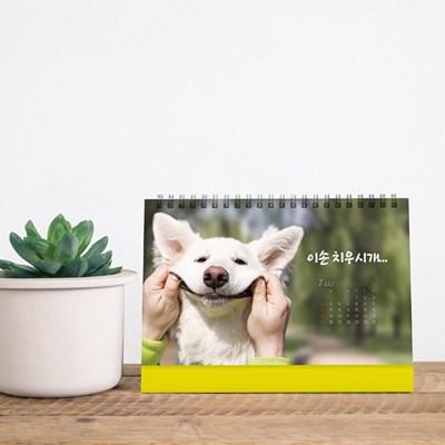 2021년 탁상용 달력 강아지 고양이 달력 탁상달력 캘린더