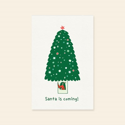 캘리엠 XVM3014 SANTA IS COMING 크리스마스카드