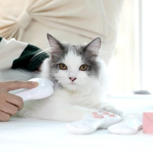 펫케어 레이저 빗 (2 in 1 고양이 레이저 포인터+털빗)
