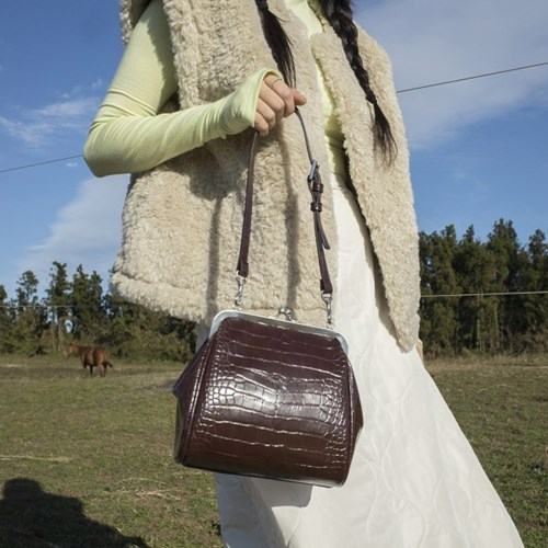 Olsen Frame mini bag ( Croc Brown )