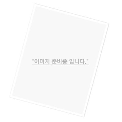 (삼성전자) DDR2 1G PC2-4200 중고