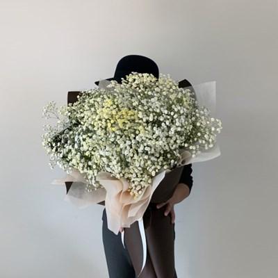 [생화/드라이가능] 대형 안개꽃다발