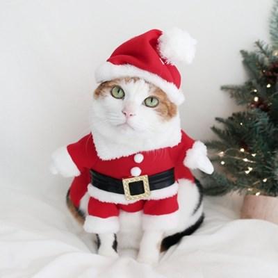 크리스마스 산타옷 산타복 고양이 강아지 옷 모자 MIYOPET