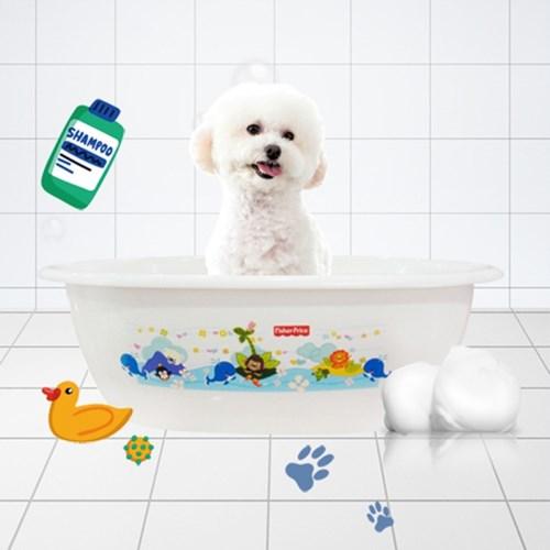 강아지욕조 애견 고양이 소형 욕조 목욕바구니