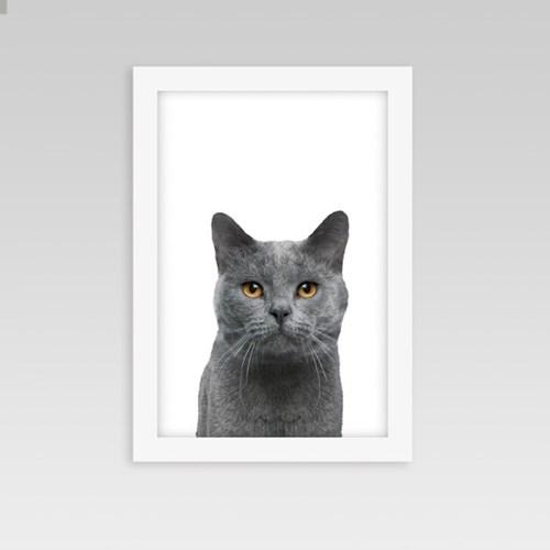 아이방 인테리어 동물액자 고양이