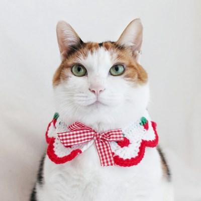 딸기 케이프 스카프 반다나 고양이 강아지 목걸이 목도리 MIYOPET