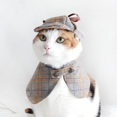 탐정 셜록 망토 고양이옷 강아지옷 모자 할로윈 코스튬 설빔 MIYOPET