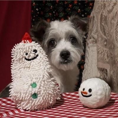 [베이컨] 눈사람 헌팅 토이
