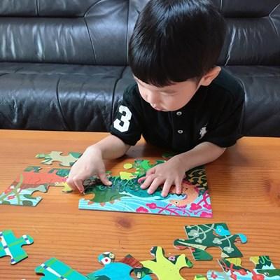 [이부] 공룡 20피스 퍼즐 / 3세이상