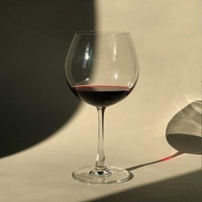 브리인나 버건디 와인잔 650ml 2pcs