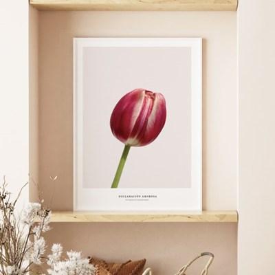핑크 튤립 꽃 그림 인테리어 액자 모음