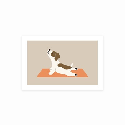 YOGA DOG postcard