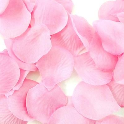 프로포즈이벤트 장식 꽃잎 [핑크]_(12200270)
