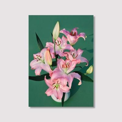 Birthday flower (5070 size) - Jitten 인테리어 포스터