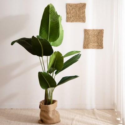 열대 나무 조화 (극락조-160cm)