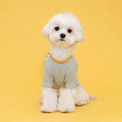 플로트 실내복사이드스냅티셔츠 강아지옷 그린스트라이