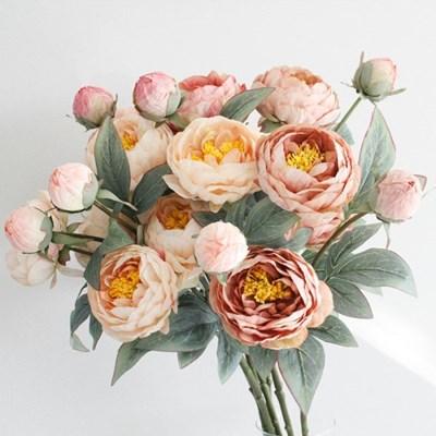 모란꽃 가지 - 3color_(3104669)
