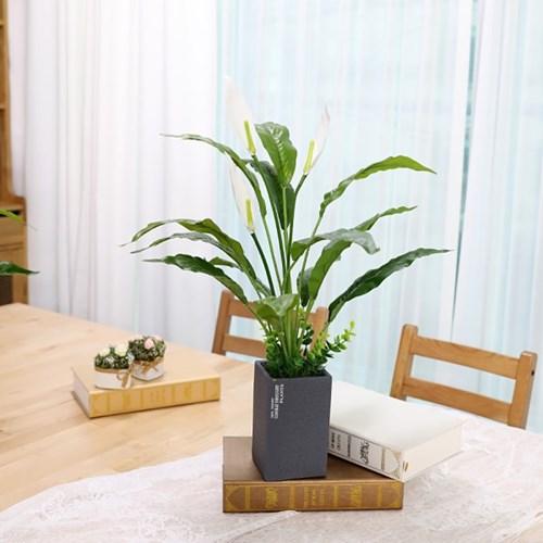 인테리어 인조나무 조화 테라조화분 스파트필름 50cm_(2385979)