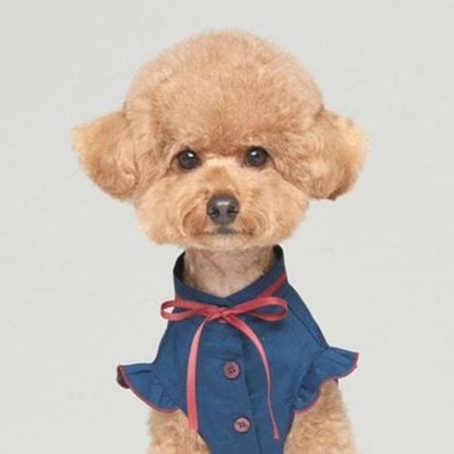 반려견 강아지 블라우스 애견 패션 깔끔 하객 네이비