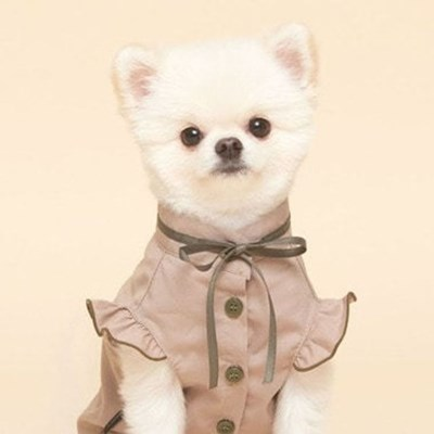 애완 동물 패션 정장 의상 블라우스 리본 의류 베이지