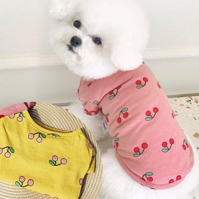 쁘앙체리티 강아지티셔츠 애견옷 강아지옷
