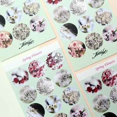 [제미포티] 사진 데코 스티커_spring flowers