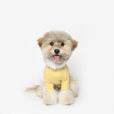 강아지 베이직 목폴라 (옐로우)