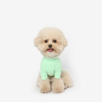 강아지 베이직 목폴라 (라임)