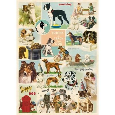 카발리니 포스터-Dog Collage