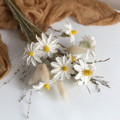 [프리저브드 플라워] 봄을 닮은 데이지 꽃다발