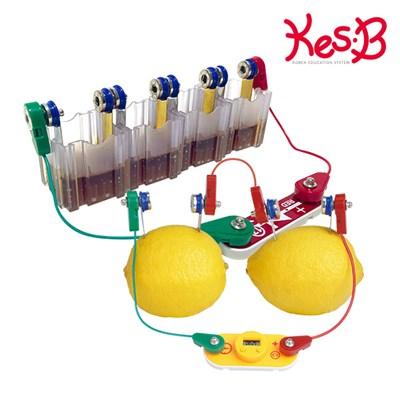 [캐스B]네이처 척척박사전기회로과일로전기만들기(2170)