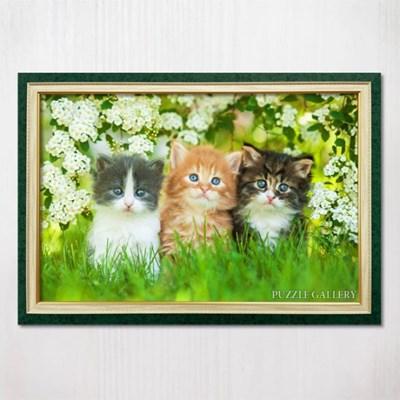 1000피스 직소퍼즐 흰 꽃밭의 아기고양이들 수지그린액