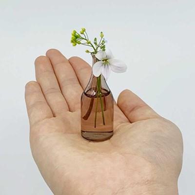 Home interior Malmaison 초미니 유리 꽃병 5P세트