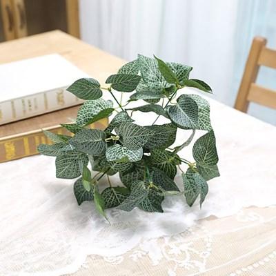 지피식물 그린테리어 가드닝 고급조화 휘토니아 부쉬_(2495448)
