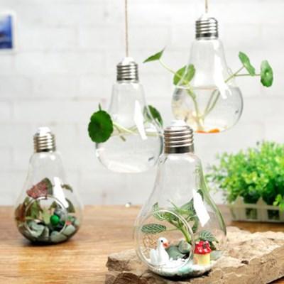 공중식물 미니 테라리움 포인트 인테리어 행잉 방식 전구모양 꽃병