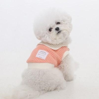 에덴숑-Sailor collar knit(세일러칼라니트-오렌지)