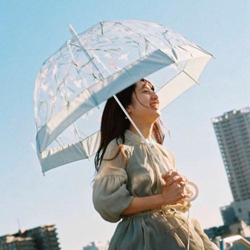 wpc우산 플랜티카 돔형 투명우산 장우산 PLV