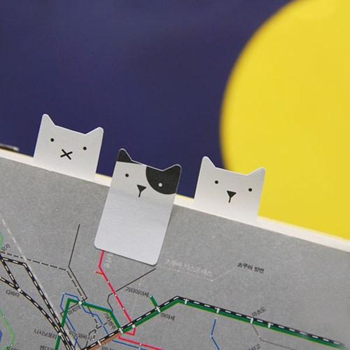 스마일탭 고양이