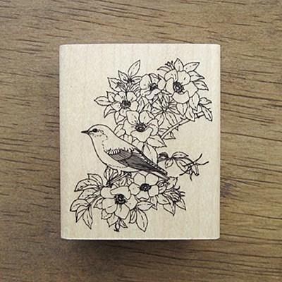 [꽃]꽃과 새
