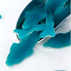 [위니비니] 비달 돌고래 모양 구미
