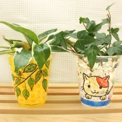 수경식물키우기 4인용세트
