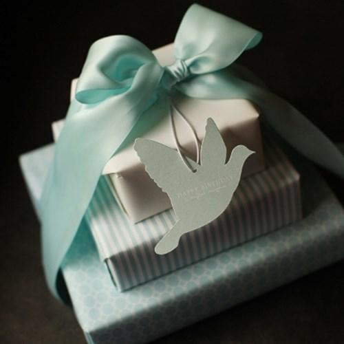디비디 메세지 테그 - Bird