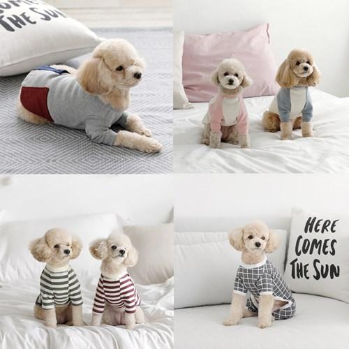 울리 인기 강아지옷/티셔츠/올인원모음전