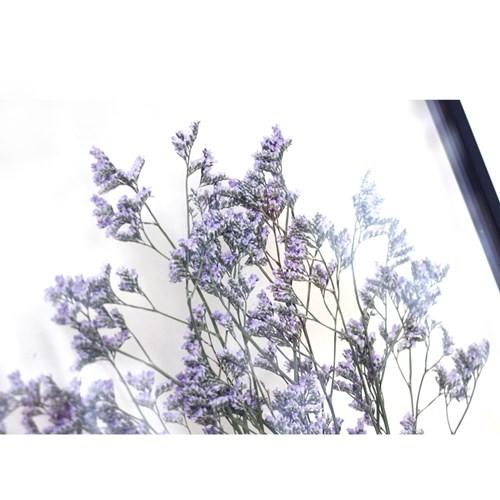 투명 압화 액자_오하이오 블루 [A3] [A2]